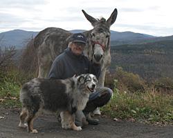 John, Sheila the donkey, and Peig, Australian shepherd.