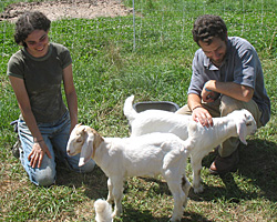 Melissa and Kevin with the hard job of socializing the goat kids.