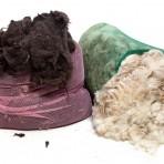 Raw Fleece – Dorset